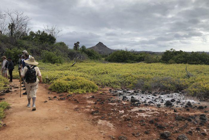 Greenvolcano 1